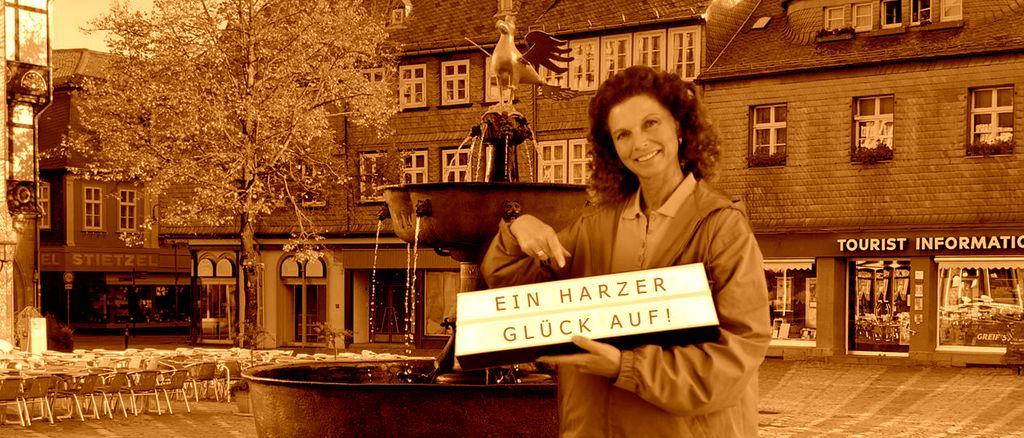 Wir bieten in Goslar alles aus der Welt der Global Mobility und Relocation: Immigration. Wohnungssuche und Settling-in ANDERS CONSULTING Relocation Service